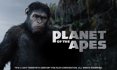 Royal Panda Planet of the Apes Turnering